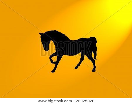 Horse Silhouette Orange Background