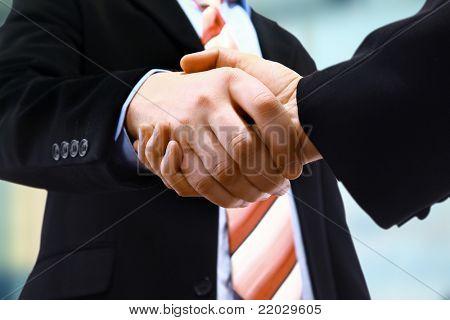 handshake isolated on light background