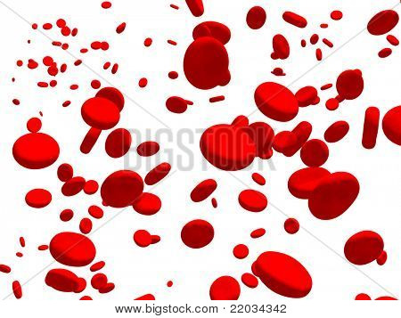 Many red erythrocytes. Isolated over white