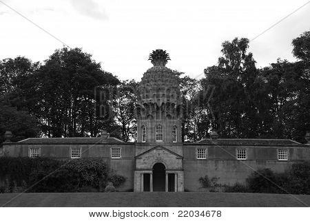 Pineapple Facade
