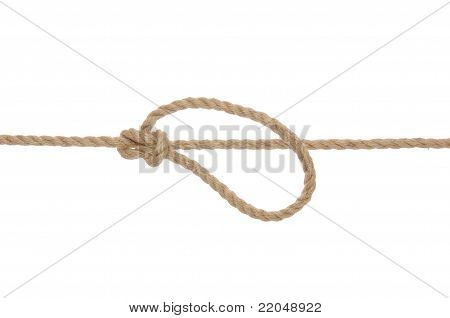Rope with Bowline Knot