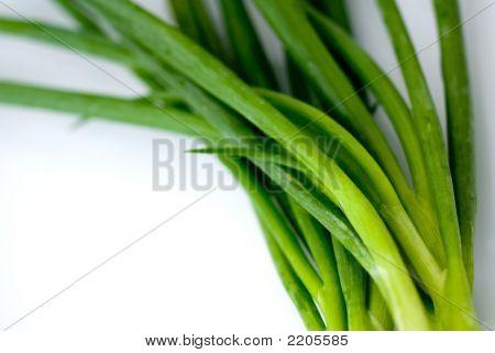 Organic Green Onions