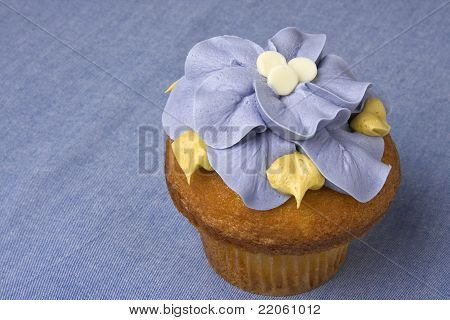 Fancy Gourmet Cupcake