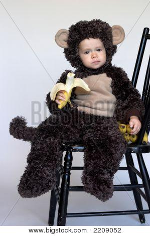 Monkey Boy