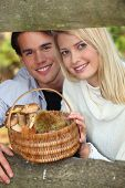 stock photo of face-fungus  - Couple collecting mushrooms and chestnuts in the forest - JPG