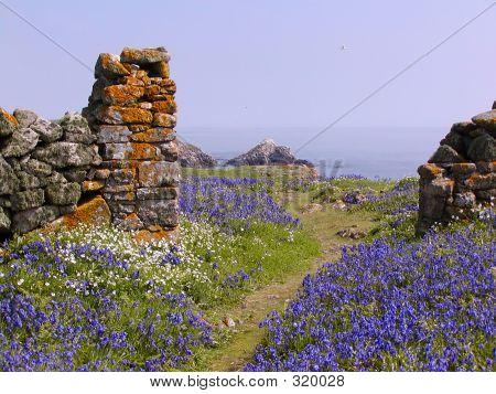 Blue Bell Wall