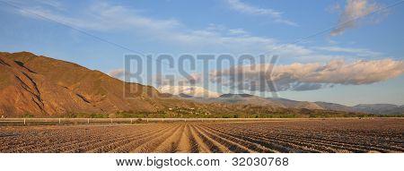Farmland Panarama