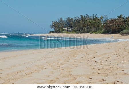 Tropical Sandy Beach And Bay