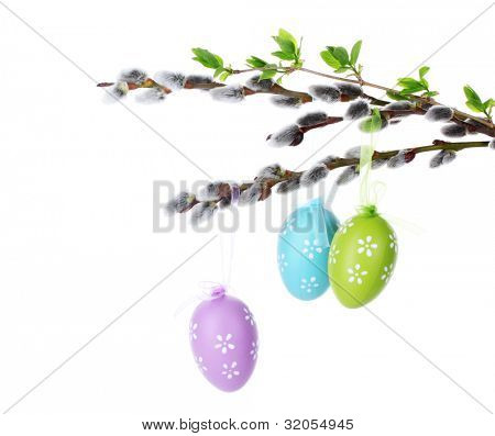 pussy-willow twigs with Easter eggs isolated on white