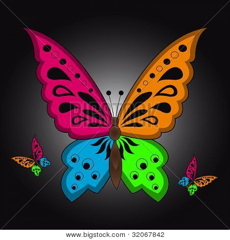 Colorful Butterfly
