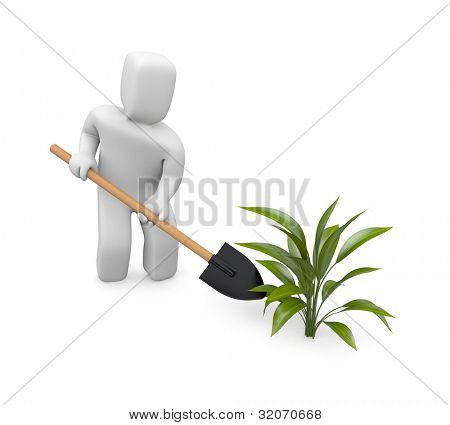 Man puts plants. Image contain clipping path