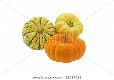Squash isolated
