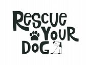 Rescue Your Dog Motivational Quote. Adoption Concept Lettering Typography Template For Poster, Card, poster