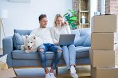 Young beautiful couple with dog sitting on the sofa using laptop at new home around cardboard boxes poster