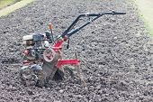 tractor prepares ground for planting
