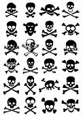 picture of skull crossbones flag  - Skulls  - JPG
