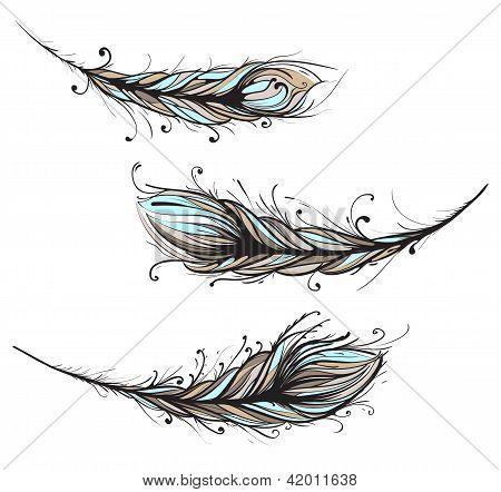 Ilustración de intrincados plumas decorativas