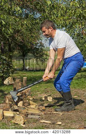 Man Splitting Logs