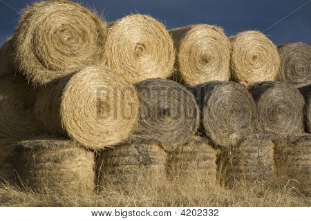 Haybales In Soft Autumn Evenign Light