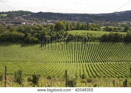 View Over Dorking. Surrey. England