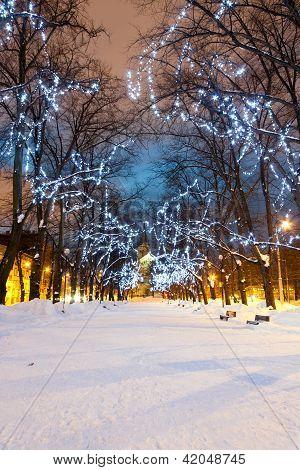 Illuminated Snowy Avenue At Night