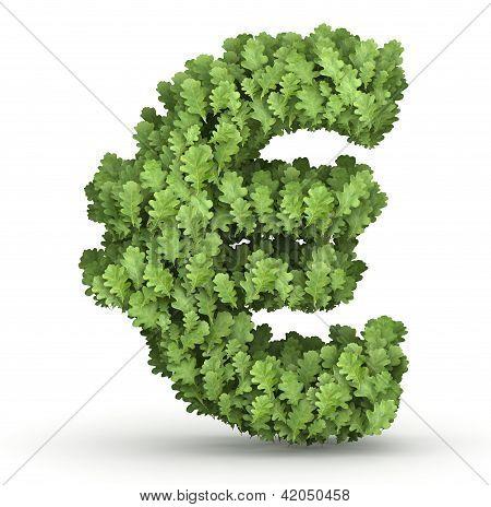 Símbolo del euro de hojas verdes