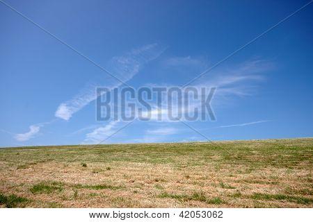 Grass Embankment