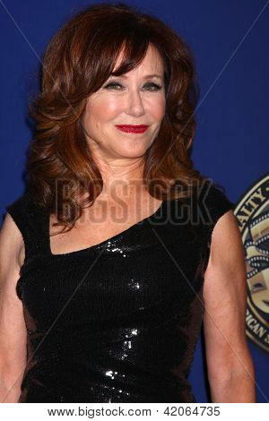 LOS ANGELES - FEB 10:  Mary McDonnell at the 2013 American Society of Cinematographers Awards at the Grand Ballroom, Hollywood & Highland on February 10, 2013 in Los Angeles, CA