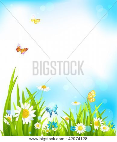 Vector spring background with beautiful flowers and butterflies