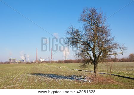 Refinery And Tree
