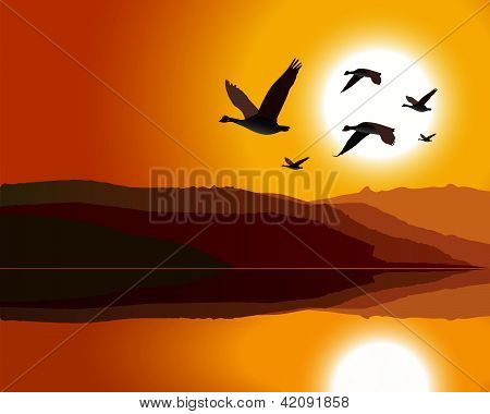 Geese flying through mountain range at sunrise/sunset