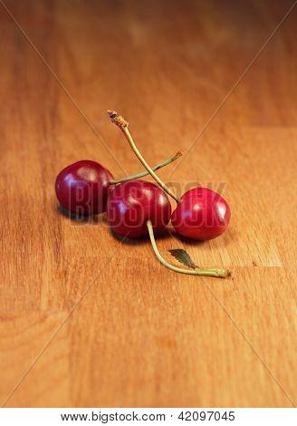 Three cherries, Prunus
