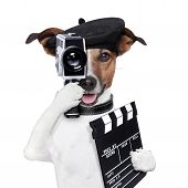 stock photo of clapper board  - movie director dog with a vintage camera - JPG