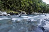 Flowing river and forest, New Zealand