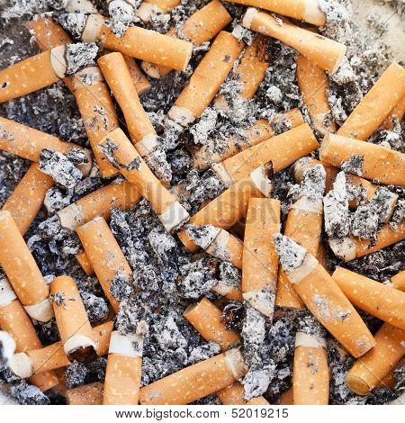 Many Cigarette Close Up