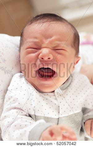 New Born Baby Crying