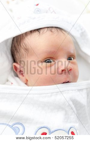 New Born Baby Looking At Camera