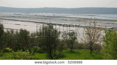 Seca Salt Flats, Slovenia