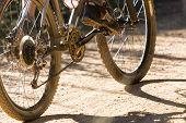 stock photo of bike path  - Downhill mountain bike on a forest path - JPG