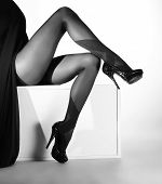 stock photo of hot pants  - Black and white photo of the beautiful legs in nice stockings over white background - JPG
