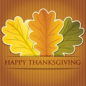 stock photo of acorn  - Acorn leaves Thanksgiving card in vector format - JPG