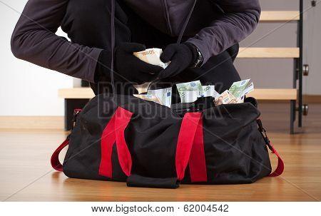 Burglar Counting The Money