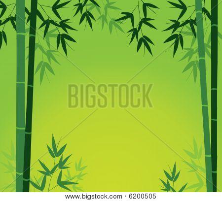 Bamboo Card
