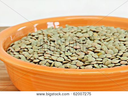 Raw Lentil Beans In A Bowl.  Narrow Selective Focus On Front.