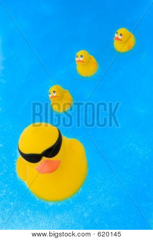 Toy Ducks In Water