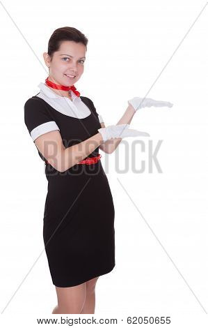 Pretty Flight Attendant Or Hostess