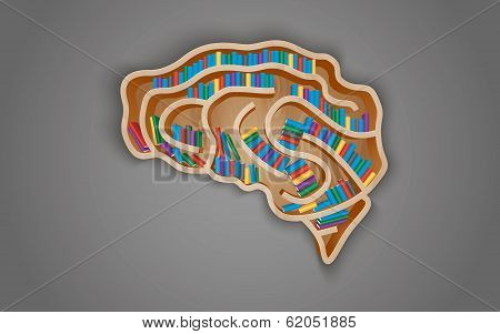 Wooden shelf in the form of the brain with books