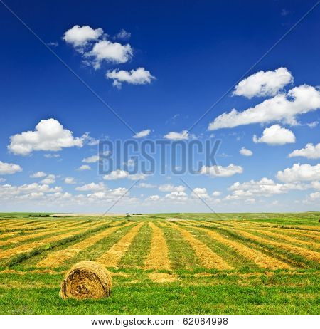 Harvested wheat on farm field with hay bale in Saskatchewan, Canada