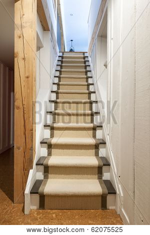 Stairway to basement in home interior with wood paneling