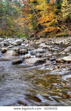 Autumn River Foliage